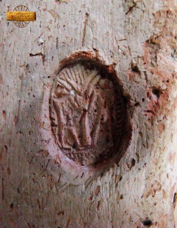 طبعة ختم تظهر شجرة الحياة وتحت شخصان
